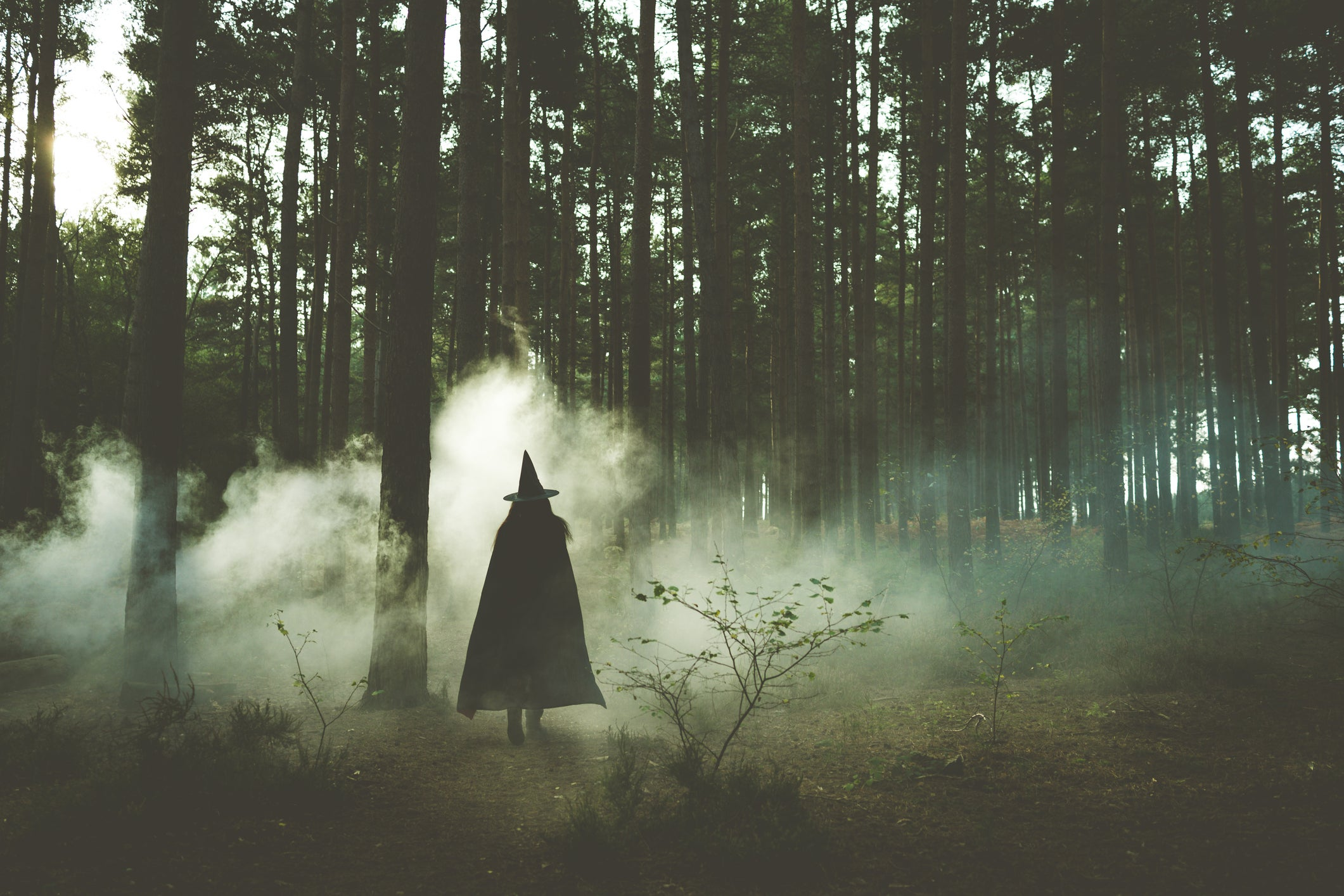 silhouette of witch in the woods