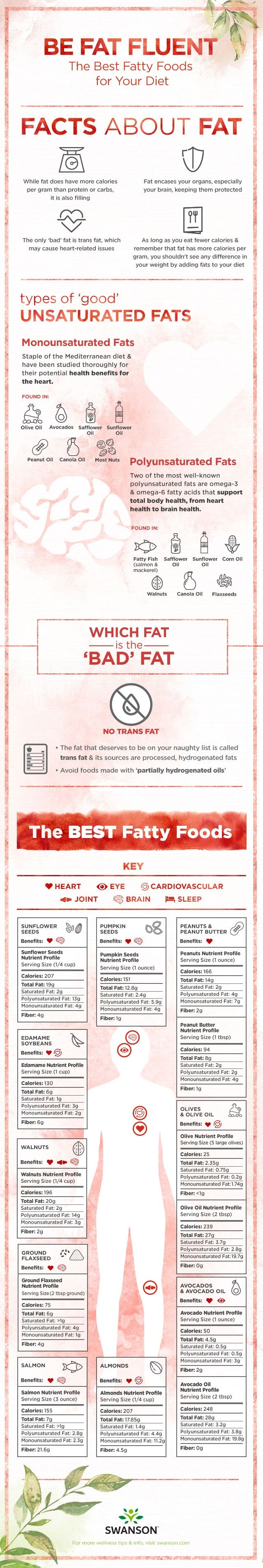 Be Fat Fluent Best Fatty Foods for Your Diet, list of good fatty foods