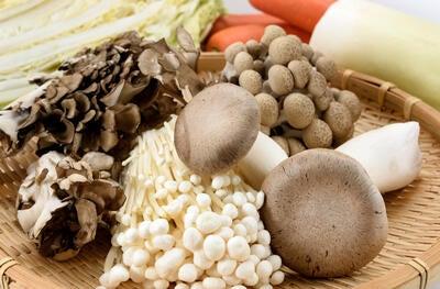 5 Mushrooms for Immunity