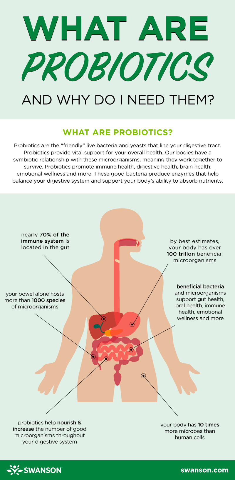 What Are Probiotics? - infographic with facts about probiotics by Swanson Health