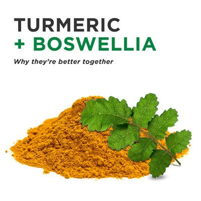 Turmeric & Boswellia: The Perfect Joint Heath Duo
