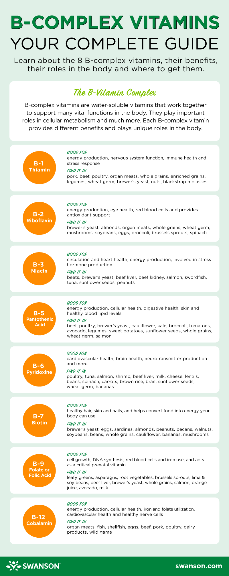 B-Vitamins Guide Infographic