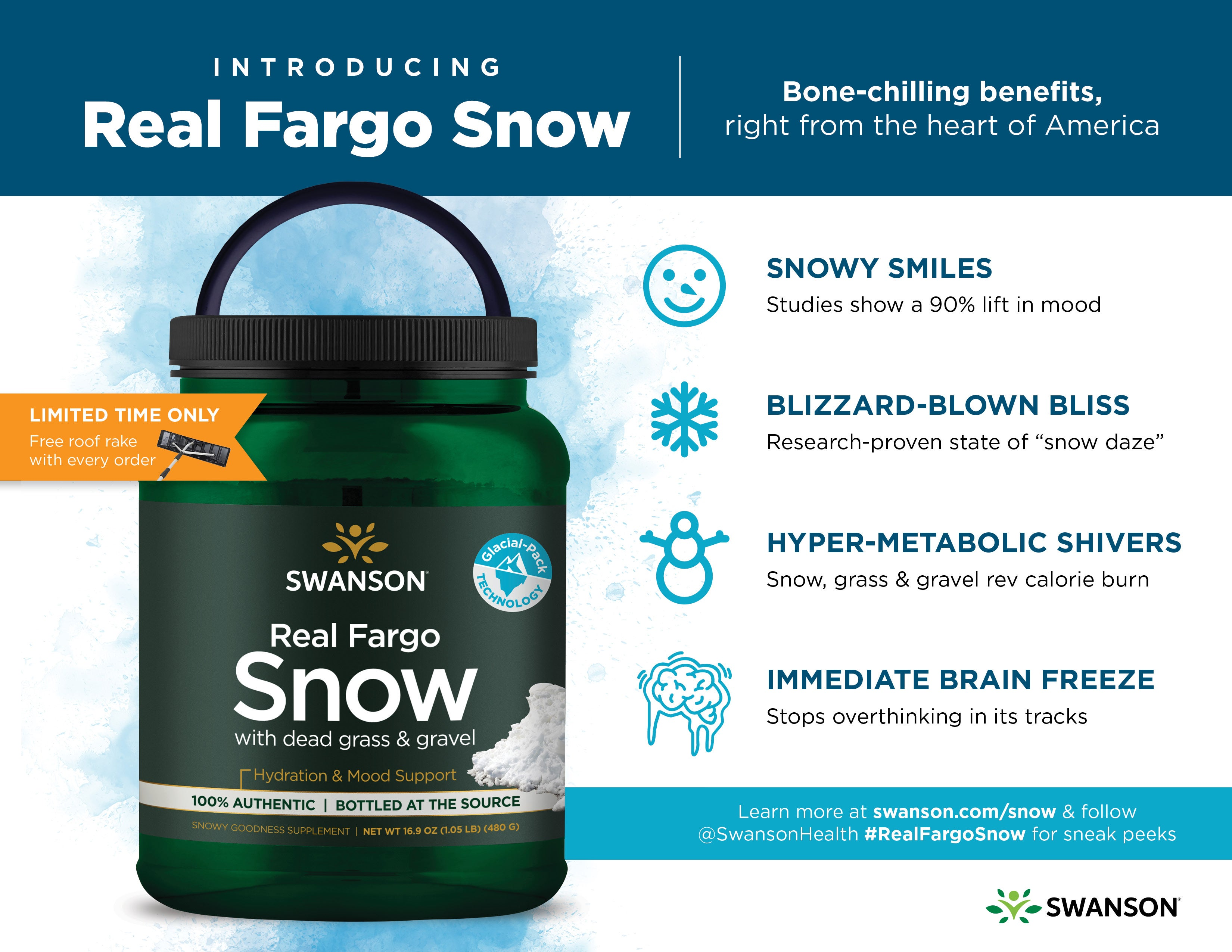 real fargo snow