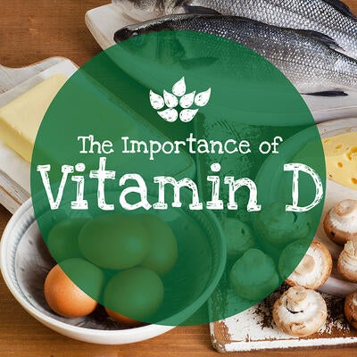 The Importance of Vitamin D + How to Get It in Your Diet