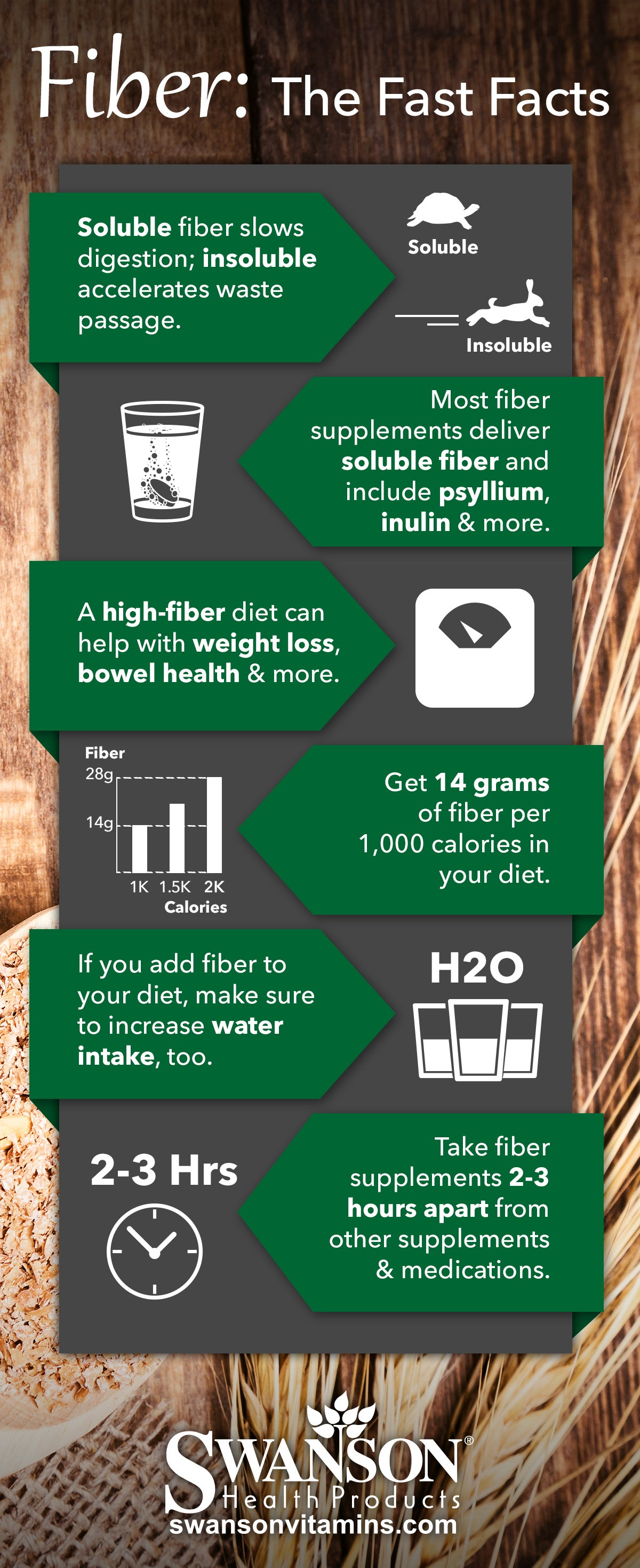 Fiber Supplement Infographic: Nutrition, Dosage and Benefits