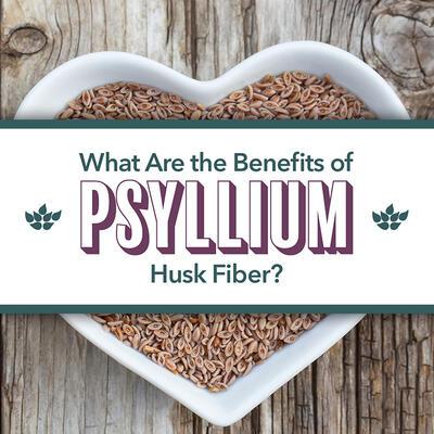 Top Reasons to Add Psyllium Husk Fiber to Your Diet