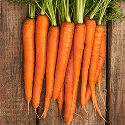 carrots for skin health