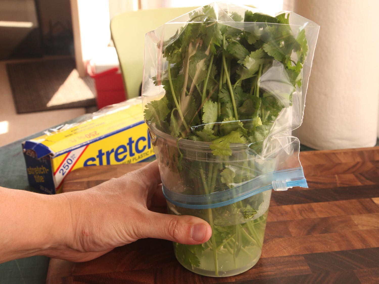 Storing fresh herbs in water and covered with a baggie.