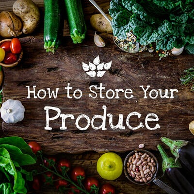 Storing Produce: How to Keep Fruits & Vegetables Garden Fresh