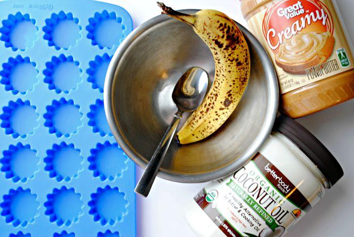 Homemade Frozen Peanut Butter Banana Coconut Oil Dog Treats