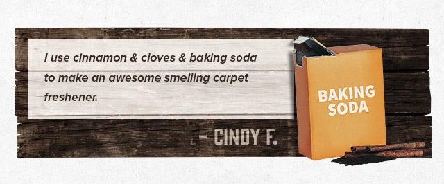 cinnamon baking soda carpet freshener