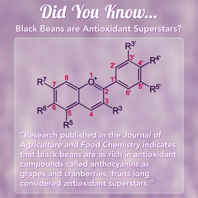 Black beans antioxidant superstars
